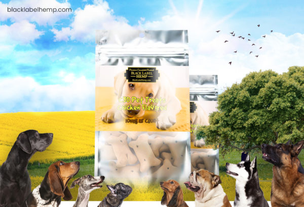 All Natural Chicken Pet Treats