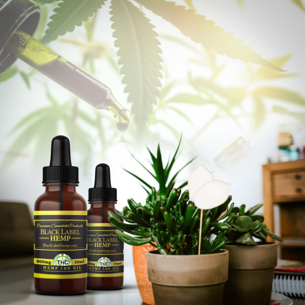 THC Free CBD Hemp Oil 800mg