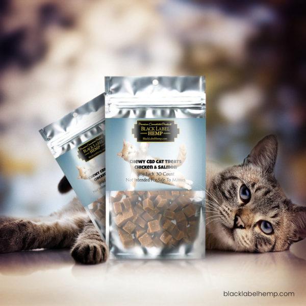 Chewy CBD Cat Treats | CBD For Cats