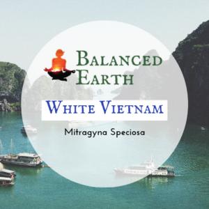 White Vietnam