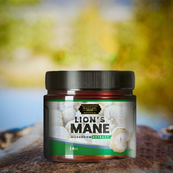 Lion's Mane Mushrooms | Hericium Erinaceus