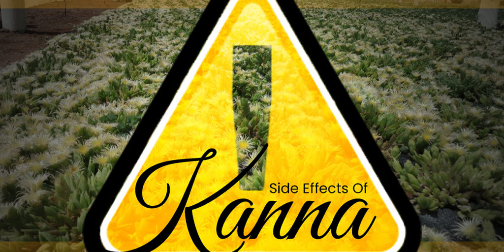 Side Effects Of Kanna