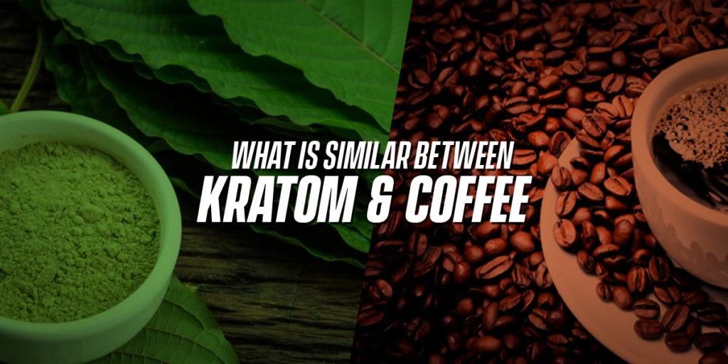 What is similar between kratom and coffee