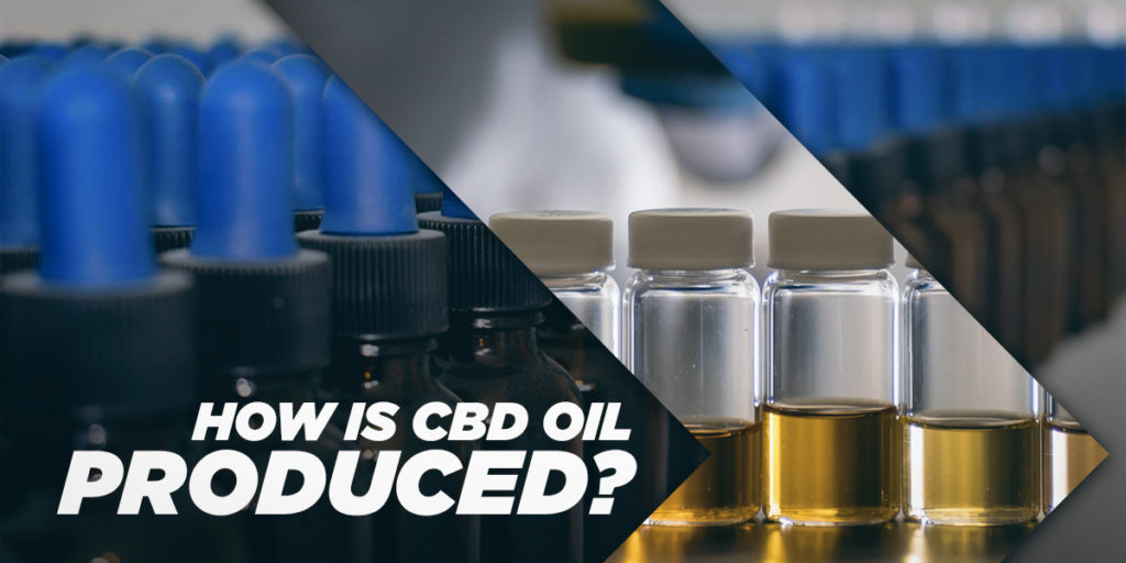 How is CBD Oil produced