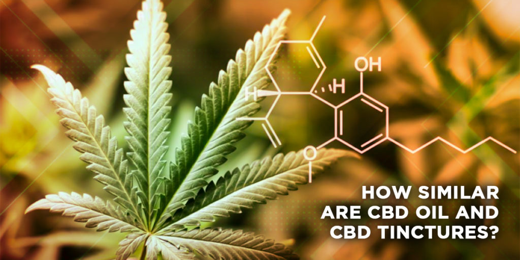 How similar Are CBD Oil and CBD Tinctures