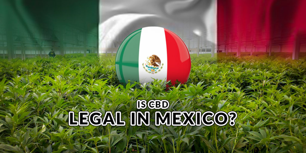 Is CBD legal in Mexico