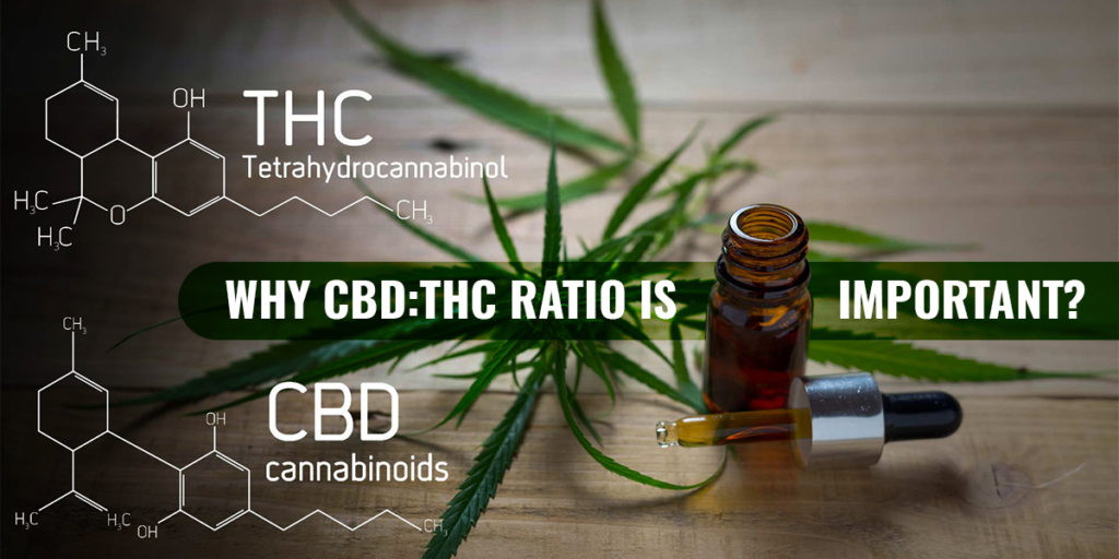 Why CBD THC ratio is important