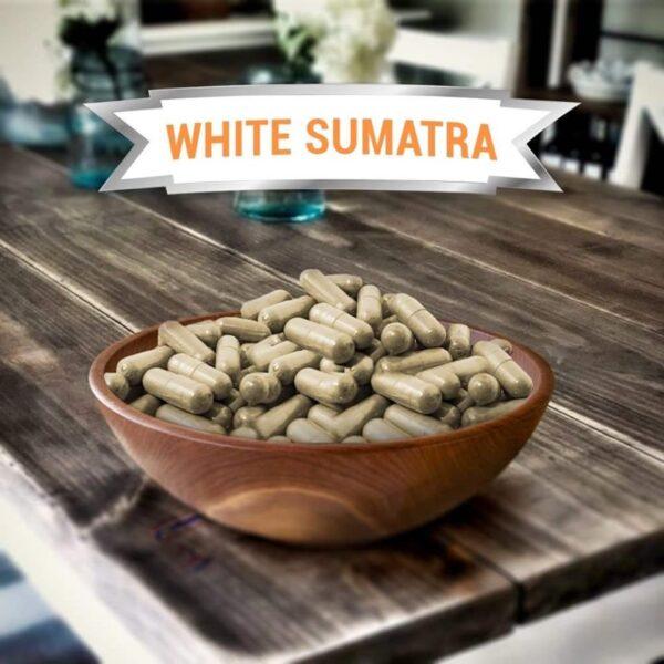 White Vein Sumatra Kratom Capsules
