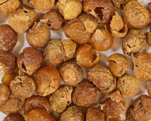Deez Soap Nuts - Laundry Soap Nuts Kit
